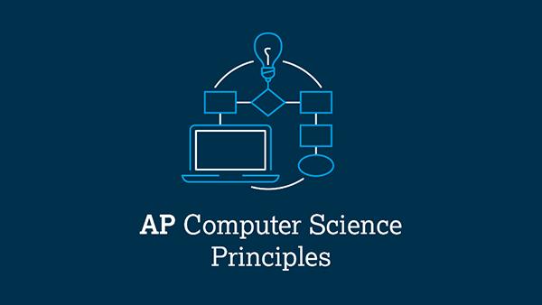 AP CS Principles Grant Opportunity Interest Form